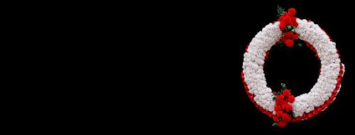 mlk50-logo